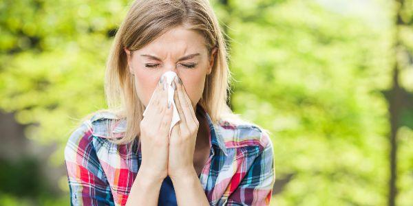 как улучшить качество воздуха в своём доме